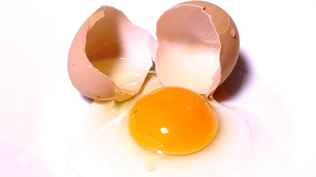 brown egg with broken shell and yoke exposed