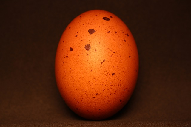 brown chicken egg with dark spots