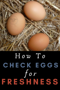 how to store farm fresh eggs