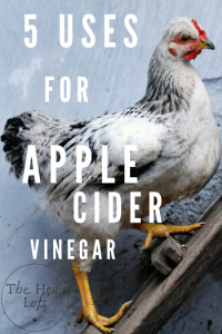 how to use apple cider vinegar for chickens