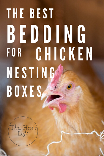 best bedding for chicken coop nesting boxes