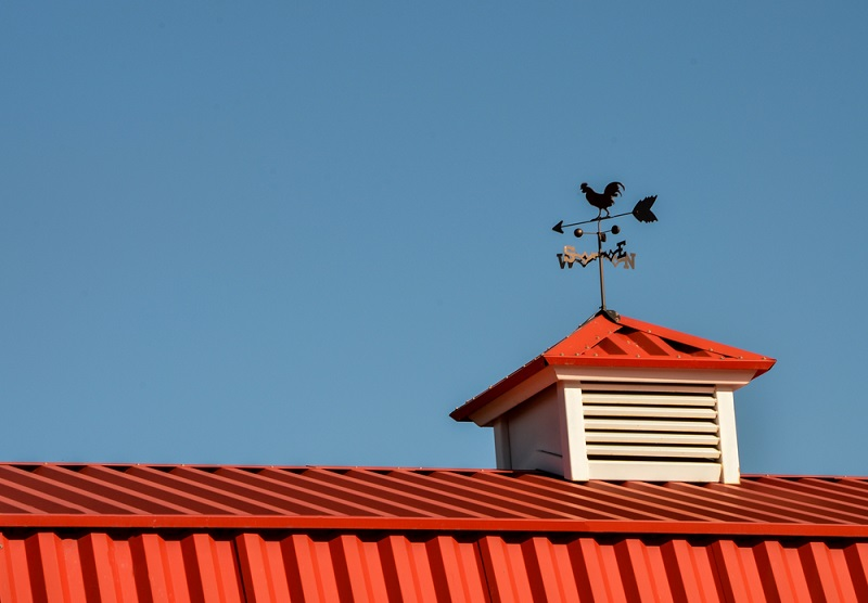 cupola with chicken weather vain