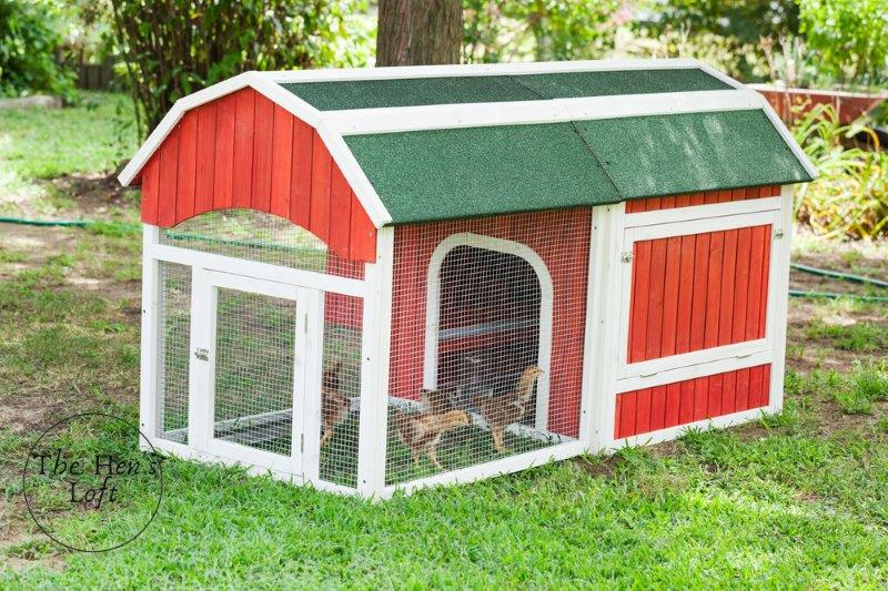 different types and styles of chicken coops